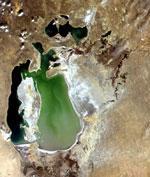 Засоление почв Аральского моря