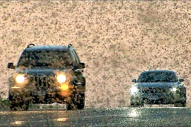 locust_invasion_in_russia