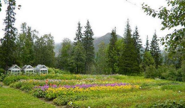 poljarno-alpijskij_botanicheskij_sad-institut