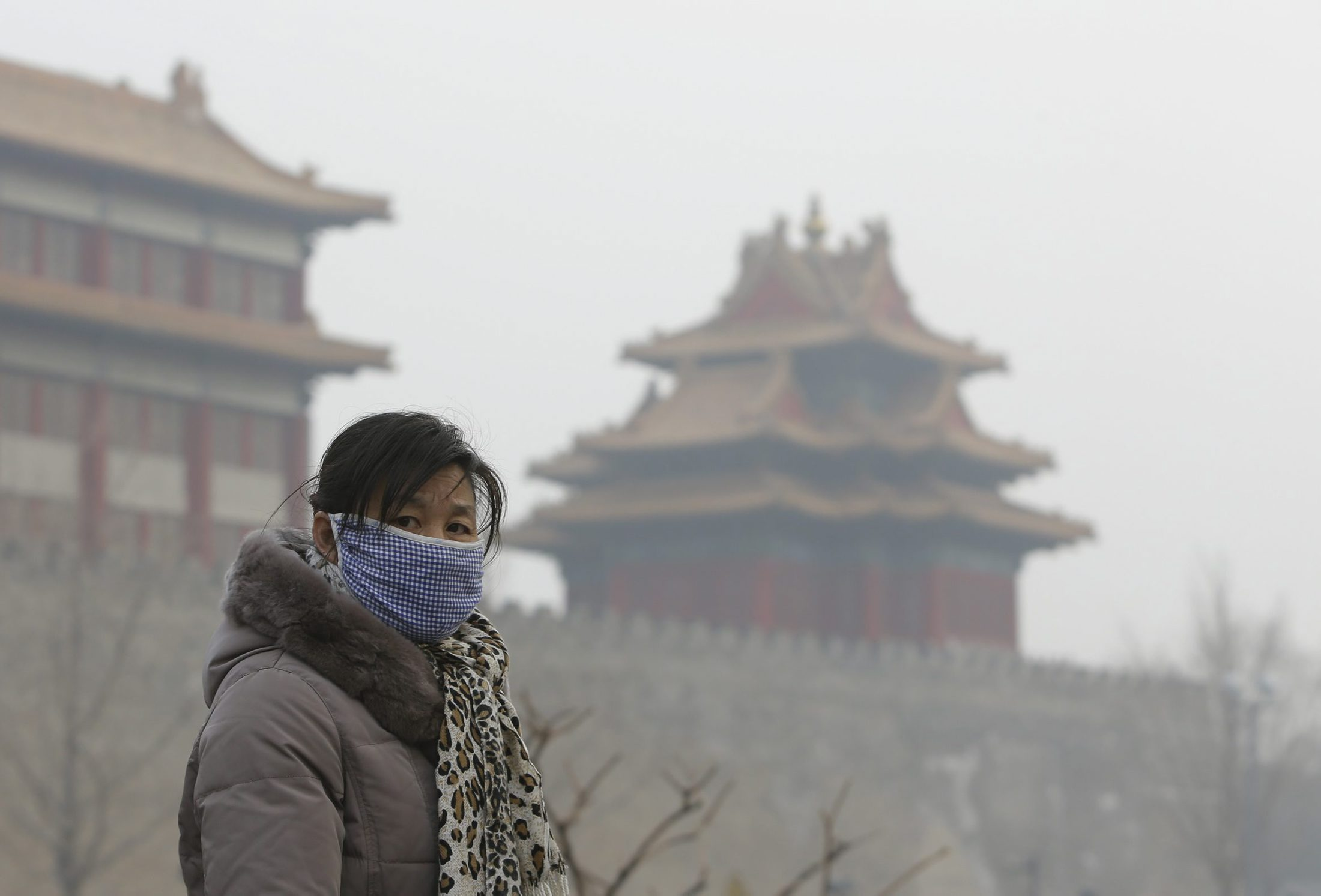 "A visitor wearing a mask walks outside the Forbidden City on a heavy haze day in central Beijing January 13, 2013. Air quality in Beijing was the ""worst on record"" on Saturday and Sunday, according to environmentalists, as the city's pollution monitoring centre warned residents to stay indoors with pollution 30-45 times above recommended safety levels. REUTERS/Jason Lee (CHINA - Tags: ENVIRONMENT SOCIETY)"